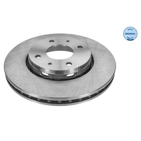 Brake Disc 515 521 5019 for VOLVO cheap prices - Shop Now!