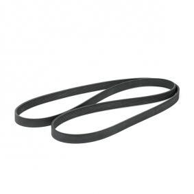 Buy BOSCH V-Ribbed Belts 1 987 947 824