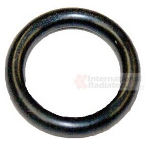 buy VAN WEZEL Seal, coolant tube 99002815 at any time