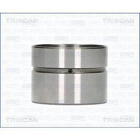 Punteria TRISCAN 80-29003 comprare e sostituisci