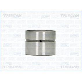 Punteria TRISCAN 80-29008 comprare e sostituisci