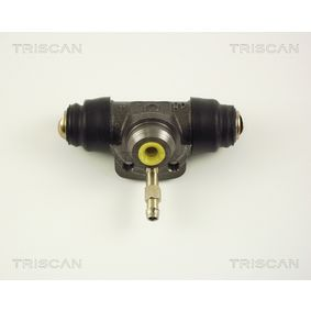 Cilindretto freno TRISCAN 8130 29004 comprare e sostituisci