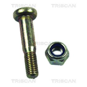 buy TRISCAN Mounting Kit, control lever 8500 16860 at any time