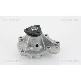 kjøpe TRISCAN Vannpumpe 8600 14003 når som helst