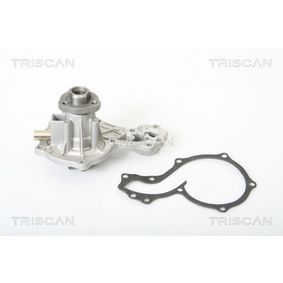 acheter TRISCAN Pompe à eau 8600 29812 à tout moment