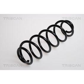 Molla sospensione autotelaio TRISCAN 8750 2876 comprare e sostituisci
