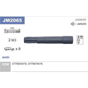 Fiche, bobine d'allumage JM2065 JANMOR Paiement sécurisé — seulement des pièces neuves