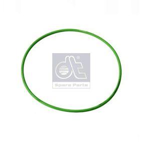 DT Tömítő gyűrű, hengerpersely 1.10007 - vásároljon bármikor