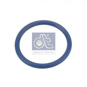 buy DT Seal, turbo air hose 2.10215 at any time