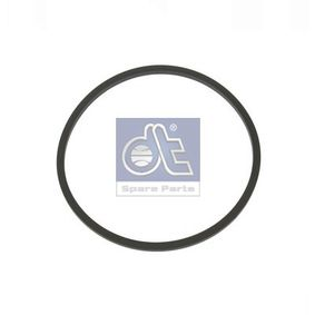 buy DT Seal, fuel filter 4.20371 at any time
