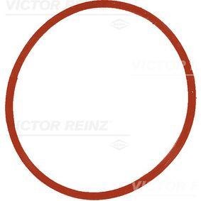 Αγοράστε REINZ Τσιμούχα, πολλαπλή εισαγωγής 40-77534-00 οποιαδήποτε στιγμή