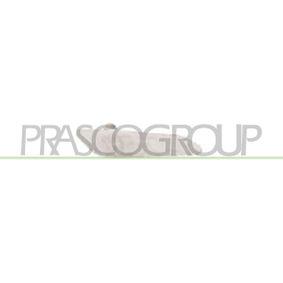 buy PRASCO Fog Light AA0704414 at any time