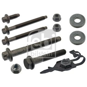 buy FEBI BILSTEIN Mounting Kit, control lever 43699 at any time