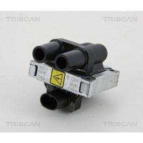 Bobina d'accensione TRISCAN 8860 15020 comprare e sostituisci