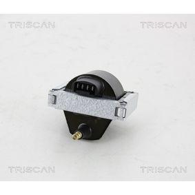 Bobina d'accensione TRISCAN 8860 28022 comprare e sostituisci