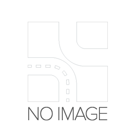 Brake Disc BG2241 for VOLVO 164 at a discount — buy now!