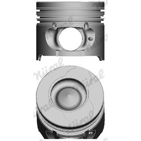 buy NÜRAL Piston 87-123407-10 at any time