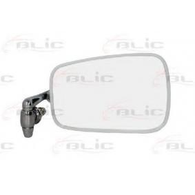 acheter BLIC Rétroviseur extérieur 5402-04-1191193 à tout moment