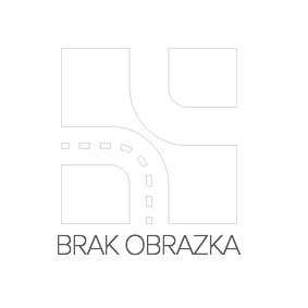 Amortyzator RIDEX 854S1074 kupić i wymienić