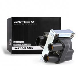 Bobina d'accensione RIDEX 689C0012 comprare e sostituisci