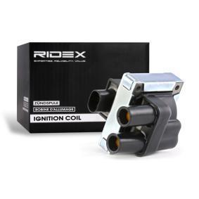 Koop en vervang Bobine RIDEX 689C0012