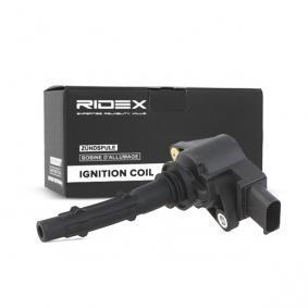 Bobine d'allumage 689C0048 à un rapport qualité-prix RIDEX exceptionnel