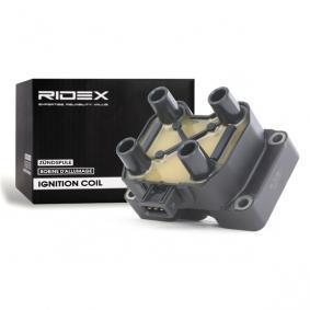 Bobina d'accensione RIDEX 689C0053 comprare e sostituisci