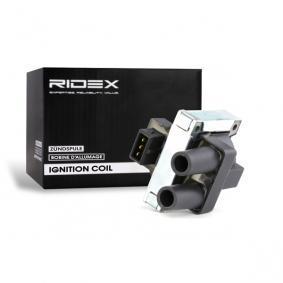 Koop en vervang Bobine RIDEX 689C0088