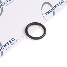 buy TRUCKTEC AUTOMOTIVE Seal / Gasket, oil dipstick 08.10.096 at any time
