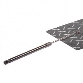 buy RIDEX Gas Spring, boot- / cargo area 219G0096 at any time
