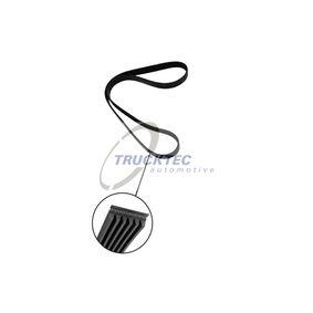 TRUCKTEC AUTOMOTIVE Riemenscheibe, Servopumpe 02.19.256 rund um die Uhr online kaufen