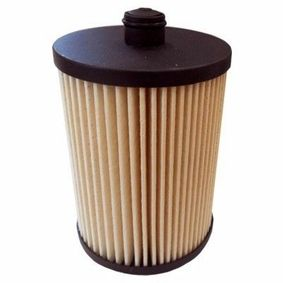 buy and replace Fuel filter MEAT & DORIA 5055