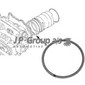 buy JP GROUP O-Ring, cylinder sleeve 1111000300 at any time
