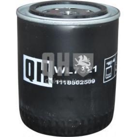 Filtro olio JP GROUP 1118502509 comprare e sostituisci