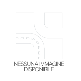 Filtro carburante 1218700209 per NISSAN INTERSTAR a prezzo basso — acquista ora!