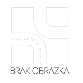 JP GROUP Uszczelka, odchylany dach 1689801106 kupować online całodobowo