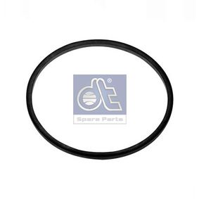buy DT Seal, fuel filter 4.20009 at any time
