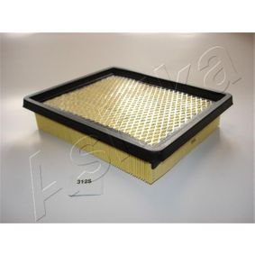 buy and replace Air Filter ASHIKA 20-03-312