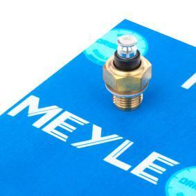 MEYLE Sensor, temperatura del refrigerante 100 919 0015 24 horas al día comprar online