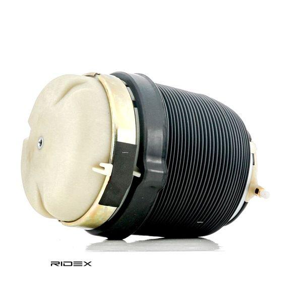 RIDEX: Original Luftfederung 4119A0025 ()