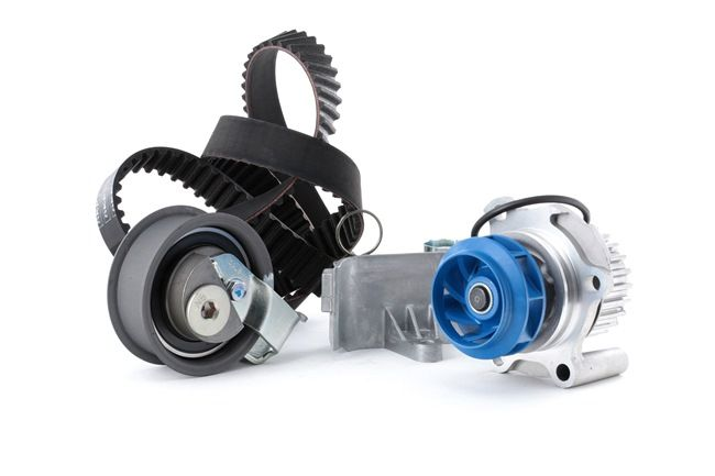 SKF VKMC 01113-2 Timing belt and water pump kit