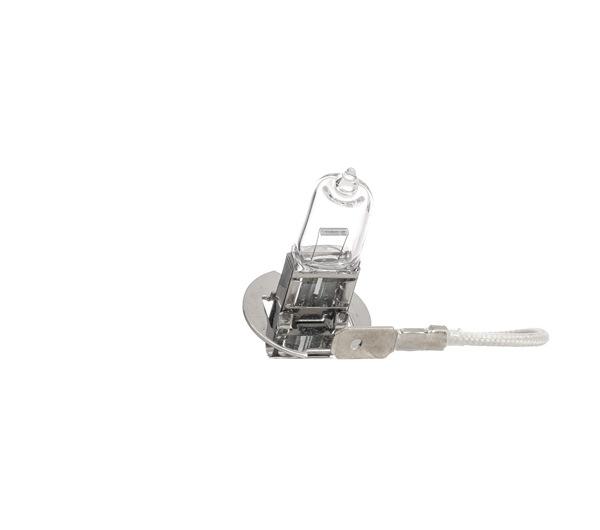 Nebelscheinwerfer Glühlampe 106B0010 S-Type (X200) 3.0 V6 238 PS Premium Autoteile-Angebot