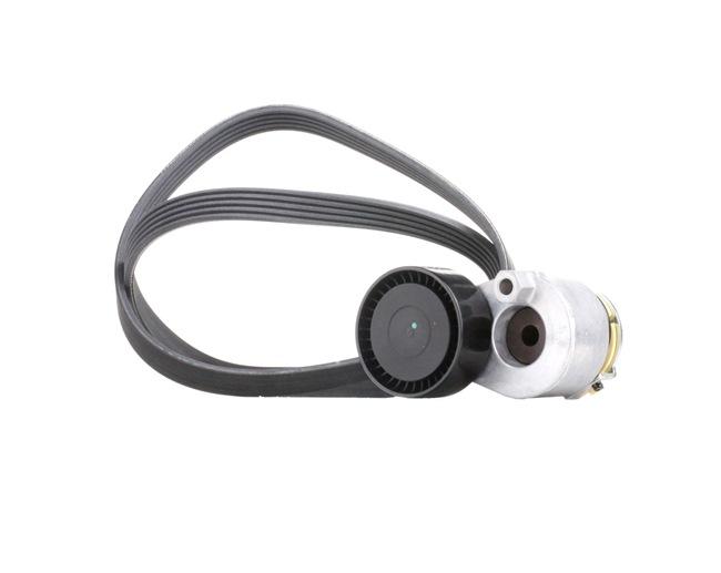 Keilrippenriemensatz 542R0509 Clio II Schrägheck (BB, CB) 1.5 dCi 65 PS Premium Autoteile-Angebot