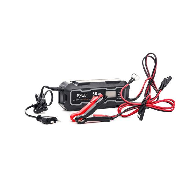 8040A0009 Starthjälp Batterikapacitet: 120Ah, 100Ah, max.laddström: 5A från RIDEX till låga priser – köp nu!