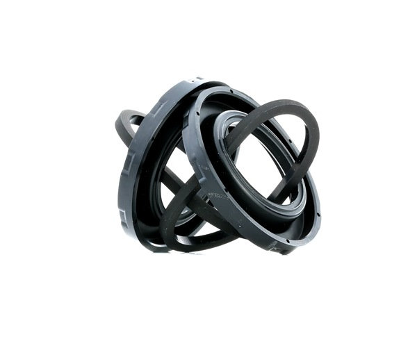 koop Remklauw reparatieset 13.0441-3811.2 op elk moment