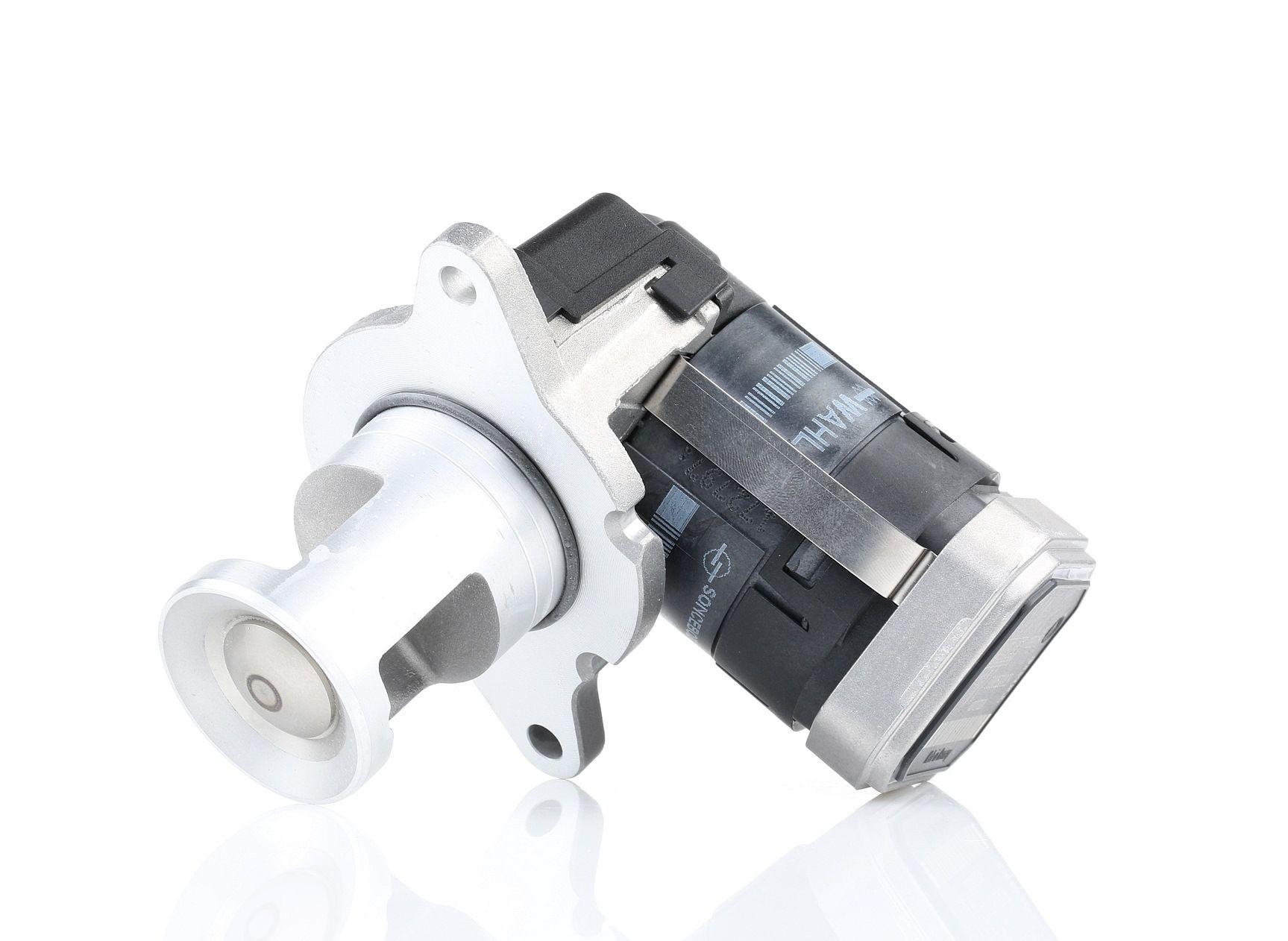 Купете E2818831883H9 WAHLER електрически, с уплътнение AGR-Клапан 7389D евтино