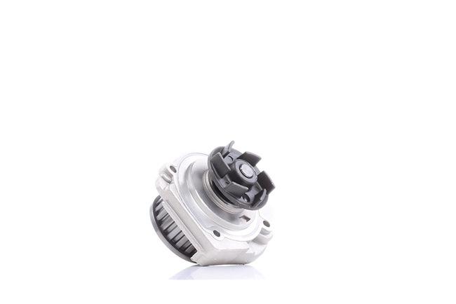 DOLZ Wasserpumpe S161