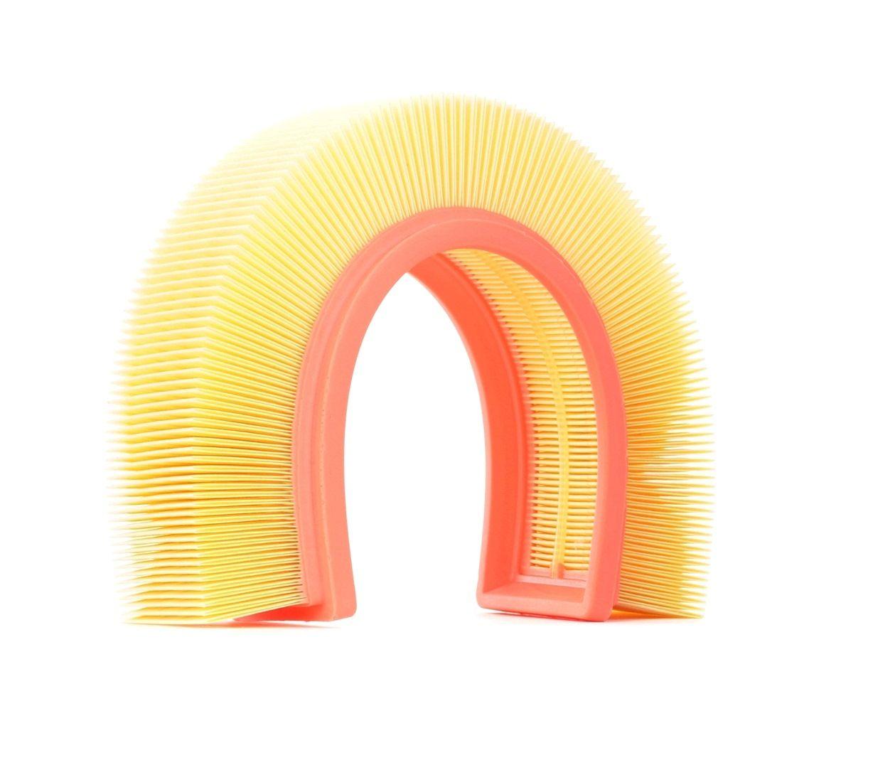 Oro filtras 8A0173 su puikiu RIDEX kainos/kokybės santykiu