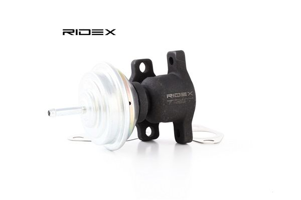 RIDEX Valvola ricircolo gas scarico-EGR 1145E0028 acquista online 24/7