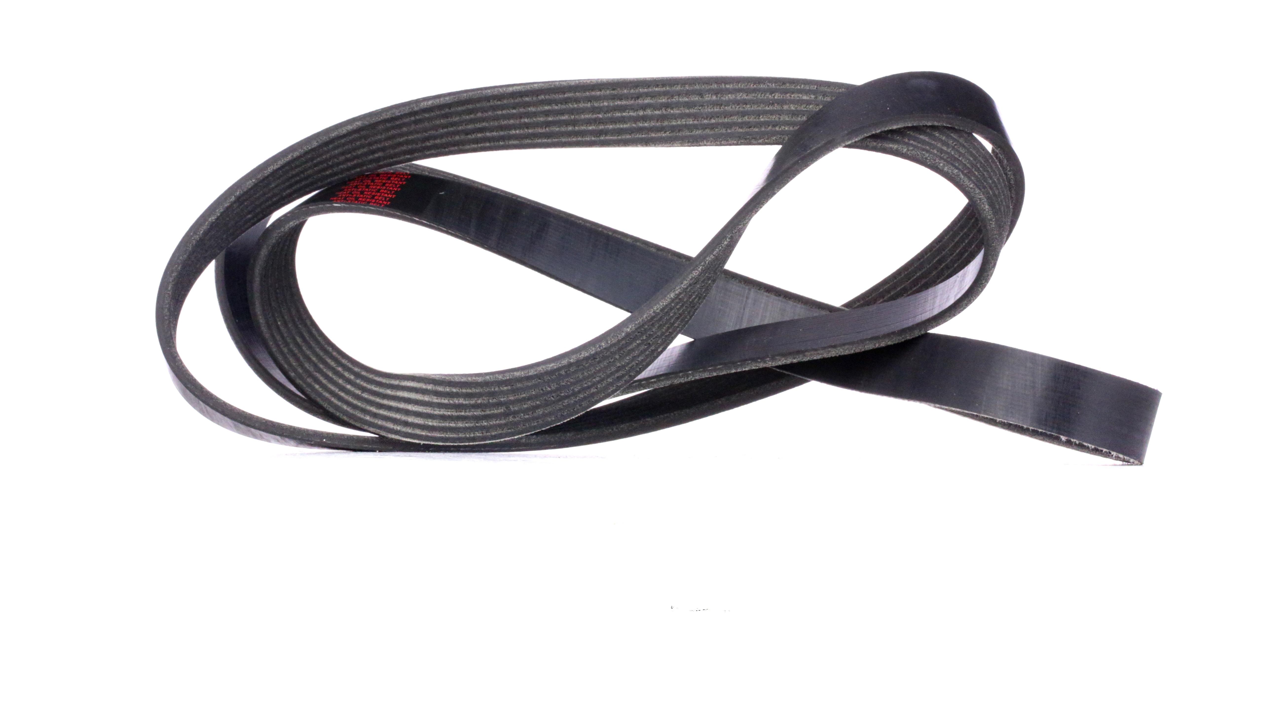 Buy RIDEX V-Ribbed Belts 305P0095 truck